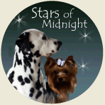 Stars of Midnight Kennel - Dálmatas e Yorks