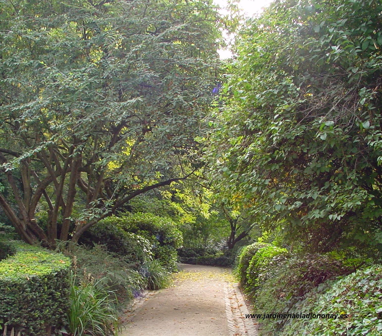 Jardineria eladio nonay naturaleza inspiraci n para la - Jardineria eladio nonay ...