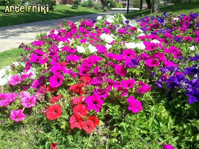 jardín botánico barakaldo vizcaya bizkaia