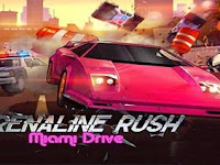 Adrenaline Rush-Miami Drive Apk v1.5 [Mod Money]