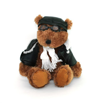 "CENTRUM LINK - LIFESTYLE GIFTS - ""PILOT BEAR"""