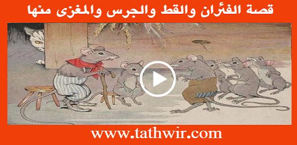 قصة الفئران والقط والجرس