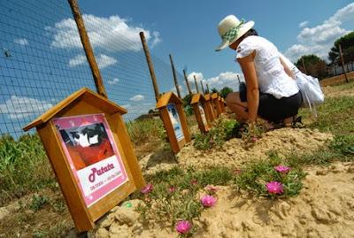 buongiornolink - A Scandicci il cimitero per animali domestici