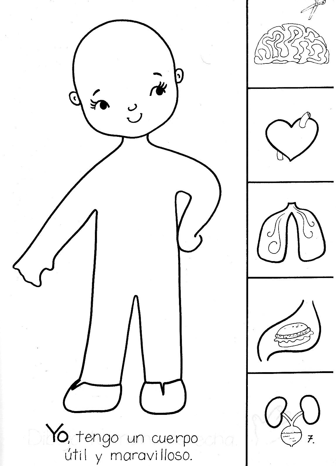 ACTIVIDADES PARA EDUCACIÓN INFANTIL: Actividad para trabajar la