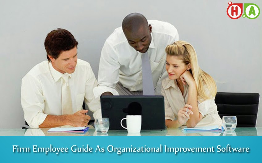 Organizational Improvement Software