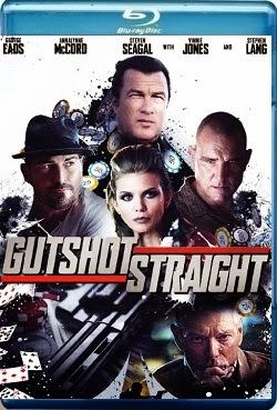 Gutshot Straight 2014 Dual Audio [Hindi Eng] 720p BRRip 800mb