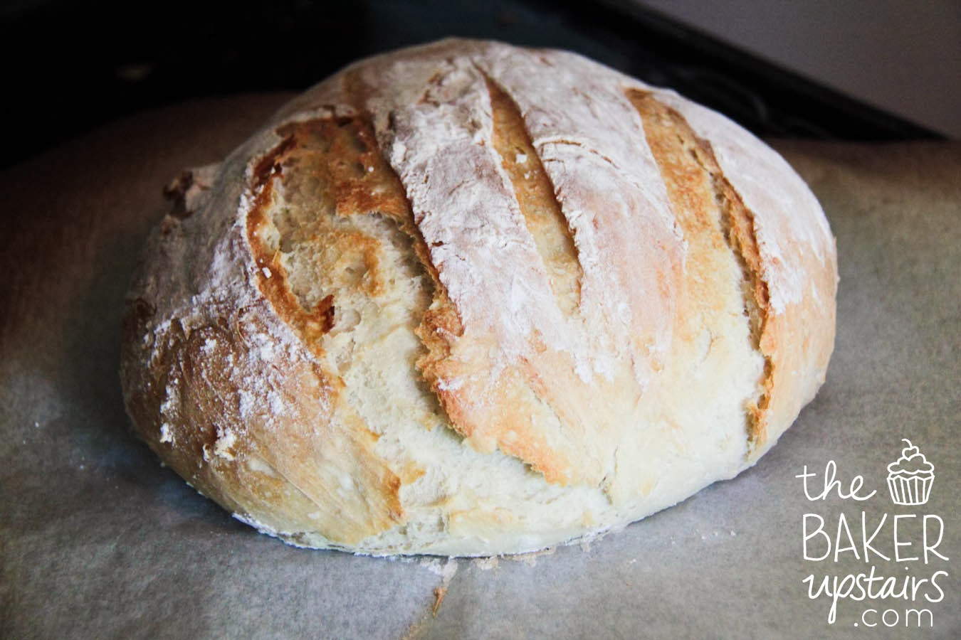the baker upstairs: crusty artisan bread