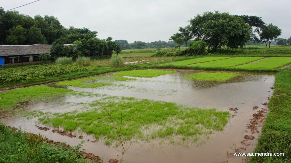 Monsoon Photography by saumendra