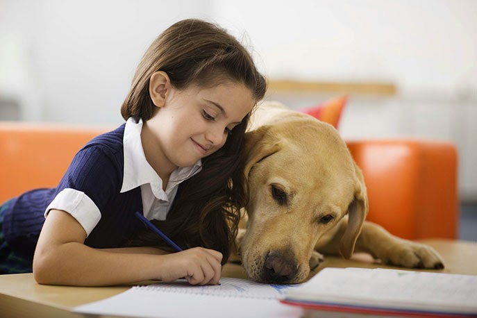 cải thiện khả năng đọc vì bé nuôi thú cưng
