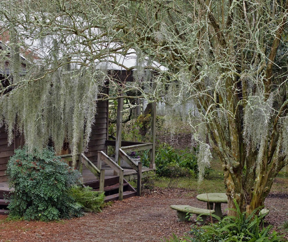 albany woodworks blog living on the bayou in southern louisiana