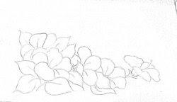 risco para pintar hibisco flor
