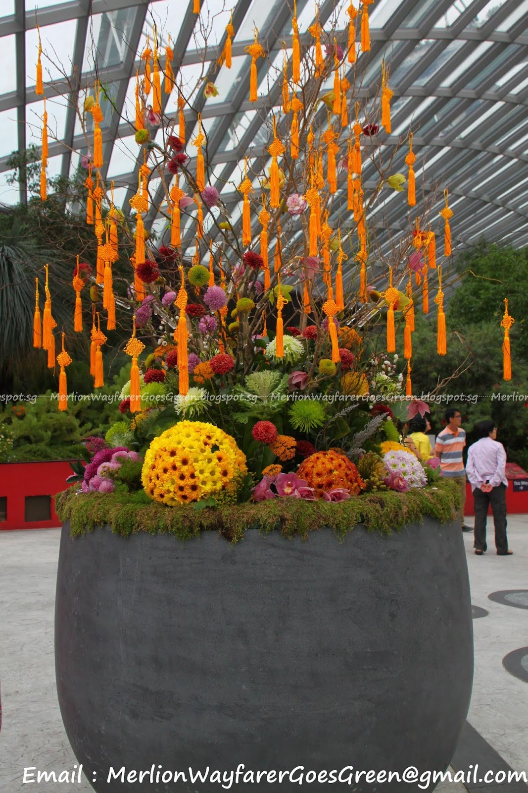 Flower Dome - Mid Autumn Among The Lantern Flowers ~ Merlion ...