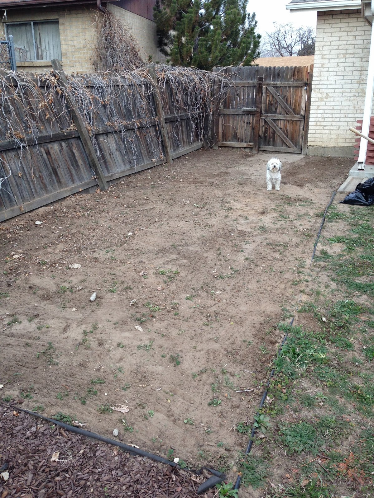 Landscaping Project Number Two Paver Patio