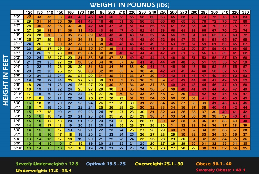 Bmi Chart For Men Over 60