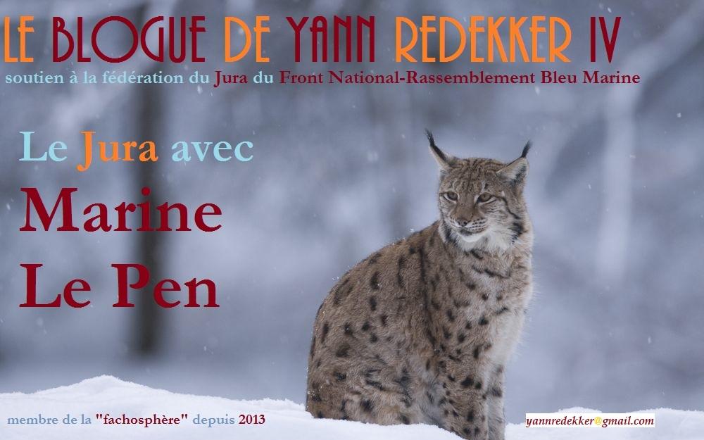 Le Blogue de Yann Redekker IV