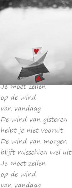 zeilen op de wind van vandaag