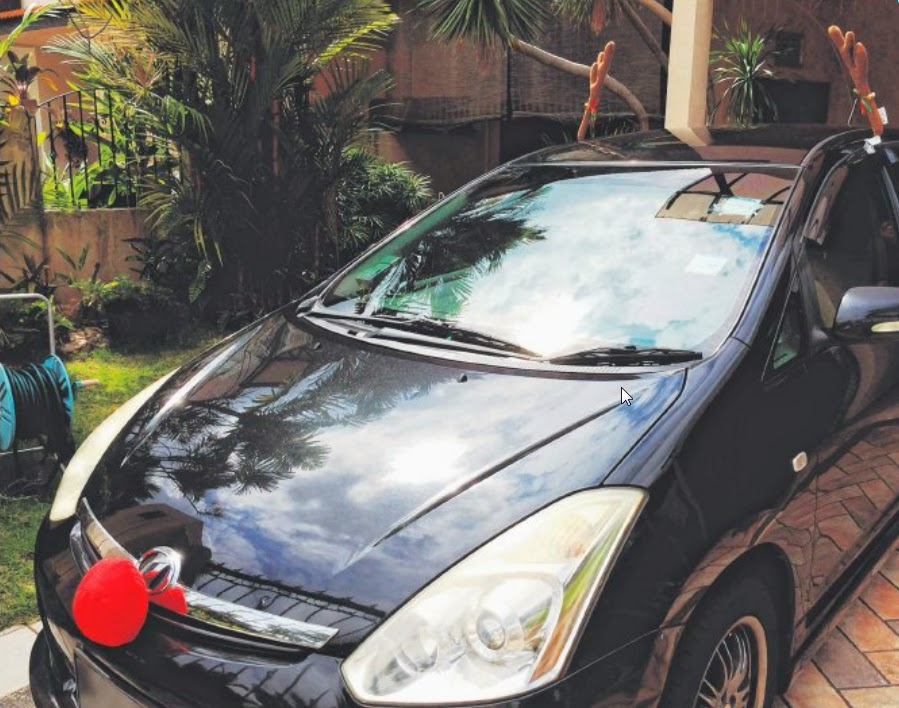 REINDEER RIDE: Cars decked with Cold Storage's Christmas decor - reindeer antlers and a red nose - have been bringing Christmas cheer to Singapore roads recently. One such car is this Toyota Wish, which was decked out by Mr Tan to surprise his parents who were overseas.