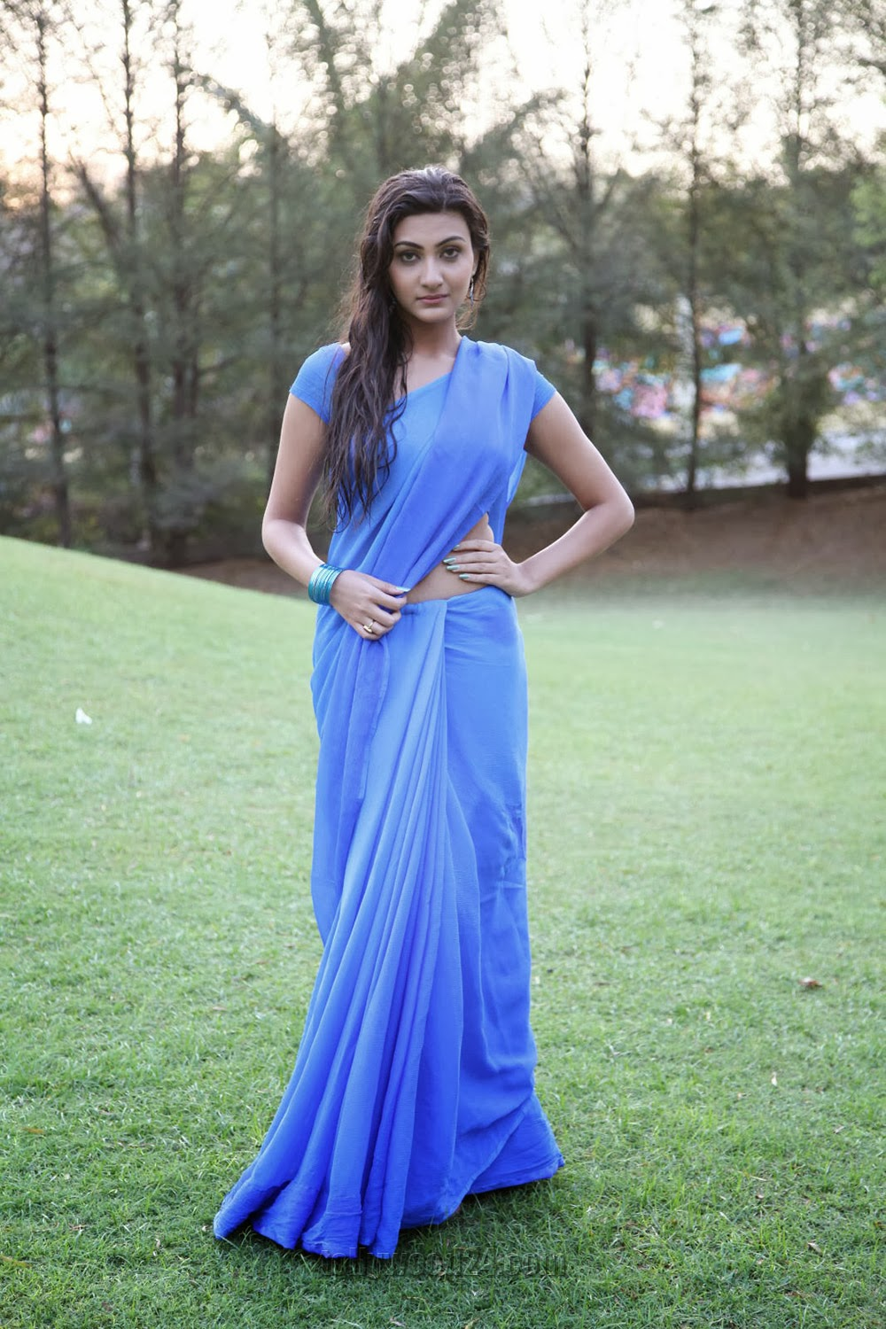 Neelam Upadhyay pics in Blue saree-HQ-Photo-14