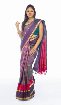 Palam Silks Diwali Collections