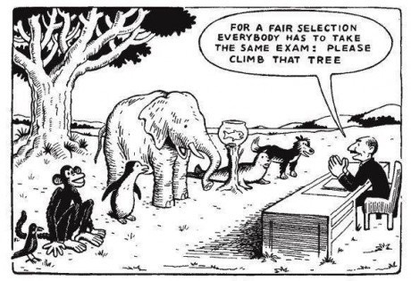 公平的爬樹比賽, 大象、猴子及金魚都要參加爬樹比賽