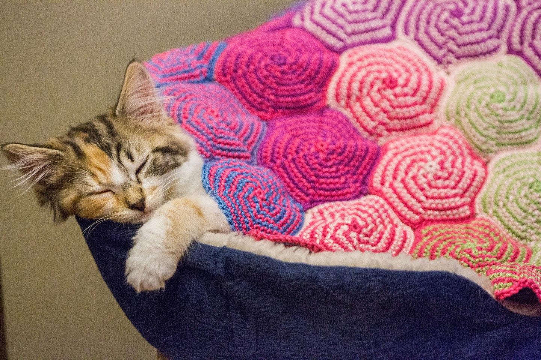 Yarn Twist: Pinwheel Blanket Free Pattern