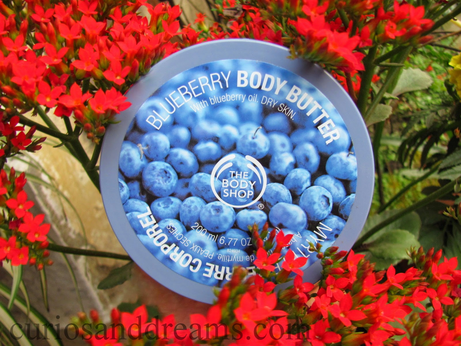 The Body Shop Blueberry Body Butter review, Blueberry Body Butter review