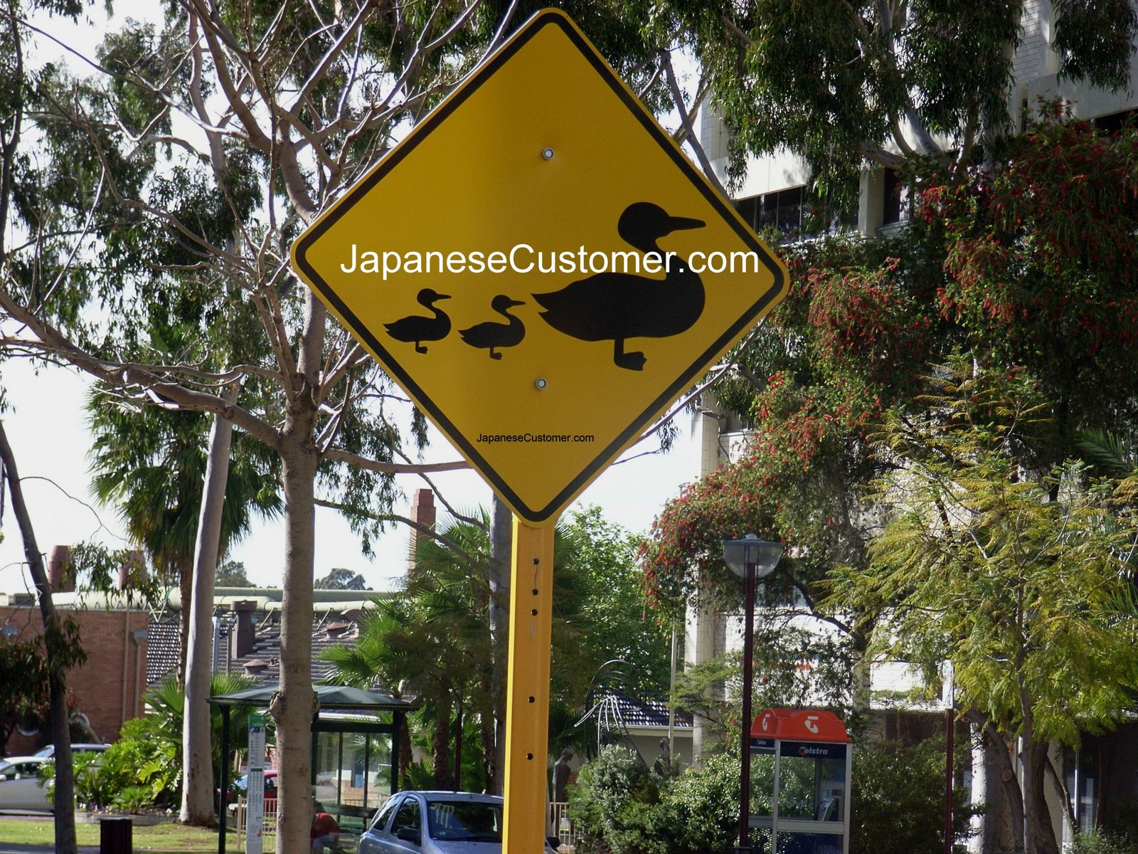 Australian street sign Copyright Peter Hanami 2010