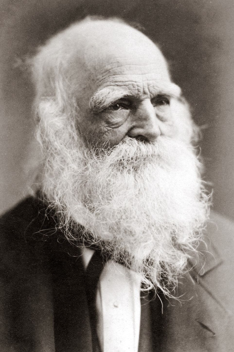 william cullen bryant biography essay William cullen bryant  the other half of this new volume presents a concise biography and,  the third essay is unique in its consideration of bryant's .