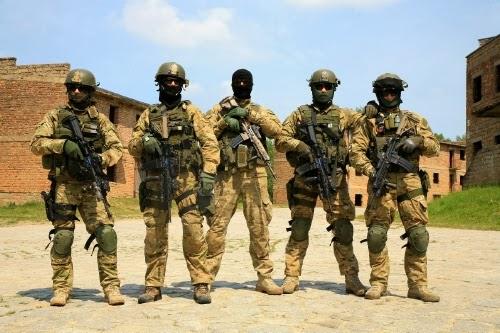 O naszym wojsku i wojnie (ewentualnej)