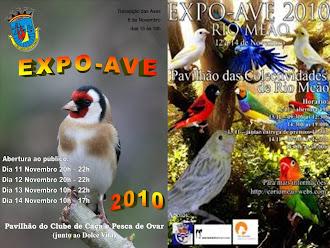 EXPOSIÇOES QUE PARTICIPEI EM 2010