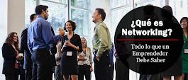 ¿Qué es Networking? Todo lo que un Emprendedor Debe Saber