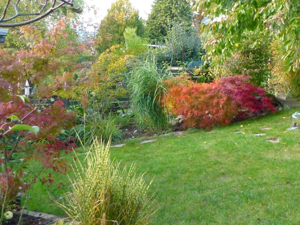 Le jardin des grandes vignes octobre 2011 for Le jardin des 6