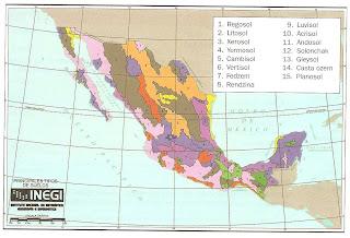 Principales tipos de suelo en Mexico. 1 •1—______4____ i 1 i i -------i-------__ Tabla 2.1 Caracterfsticas de los suelos de mayor extensiOn en Mexico. Regosol Litosol Xerosol Yermosol Cambisol Vertisol Bloque 2 ldentifica los principales problemas ecologicos para actuar con propuestas de solucion -- IEXICO , sticas 1. Regosol 9. Luvisol 2. Litosol 10. Acrisol 3. Xerosol 11. Andosol 4. Yermosol 12. Solonchak 5. Cambisol 13. Gleysol 6. Vertisol 14. Casts ozem 7 Fedzem 15. Planosol 8. Rendzina