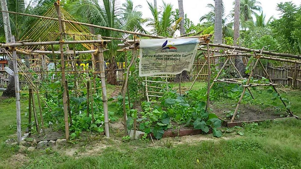 aral pinoy funds started training on vegetable gardening