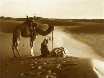 Kisah Qais dan Laila ( Laila - Majnun ) | PENYEJUK HATI ...