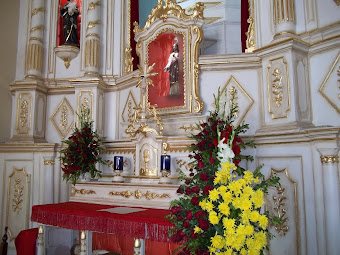 Fotos da Festa de São Sebastião - 2012
