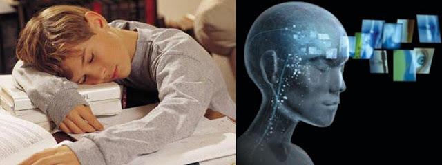 الساهرون أكثر ذكاءً ممن ينامون مبكراً لماذا ؟