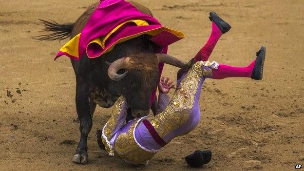 La Venganza de los toros.Tres toreros heridos en un solo evento