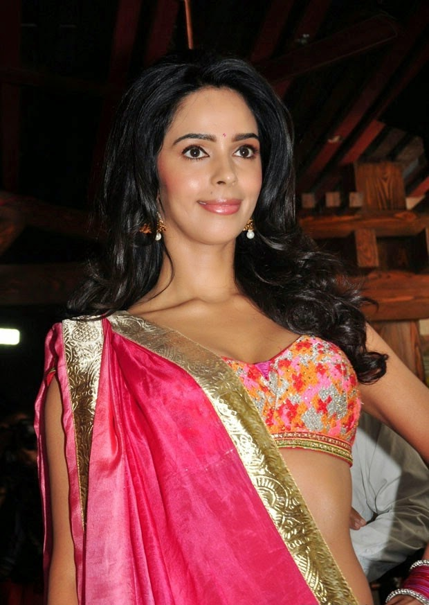 mallika sherawat stills at dirty politics hindi movie
