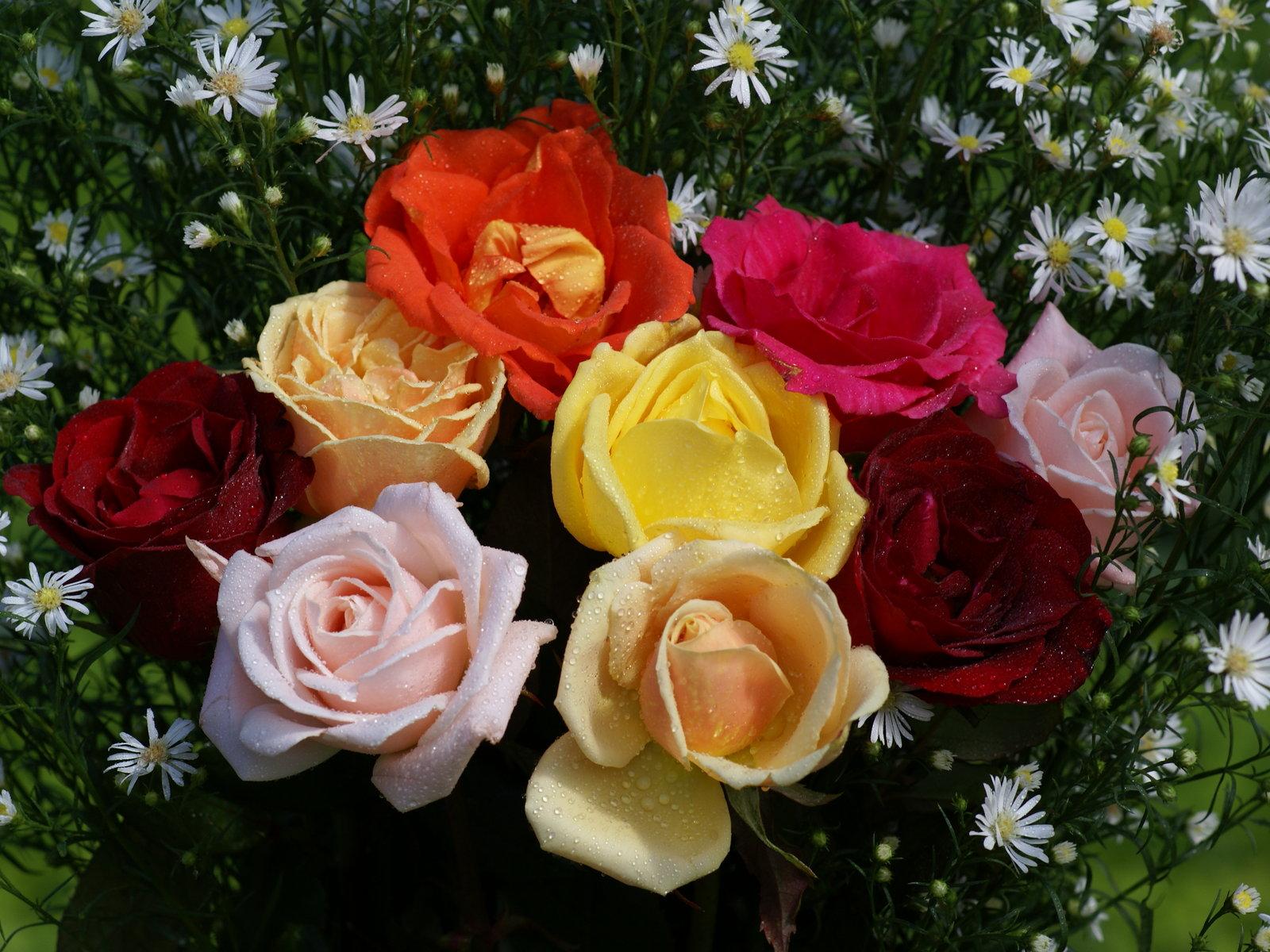 flores con bonitos mensajes de cumpleaos imagenes fotos de ramos de flores preciosas