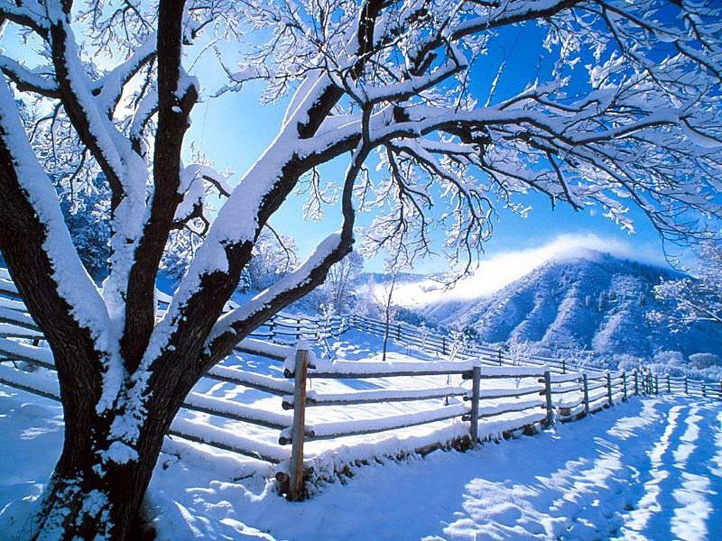 Natural Snow Wallpaper