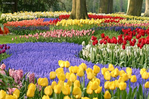 Paisajes de ensue o paisajes de holanda - Jardines de holanda ...