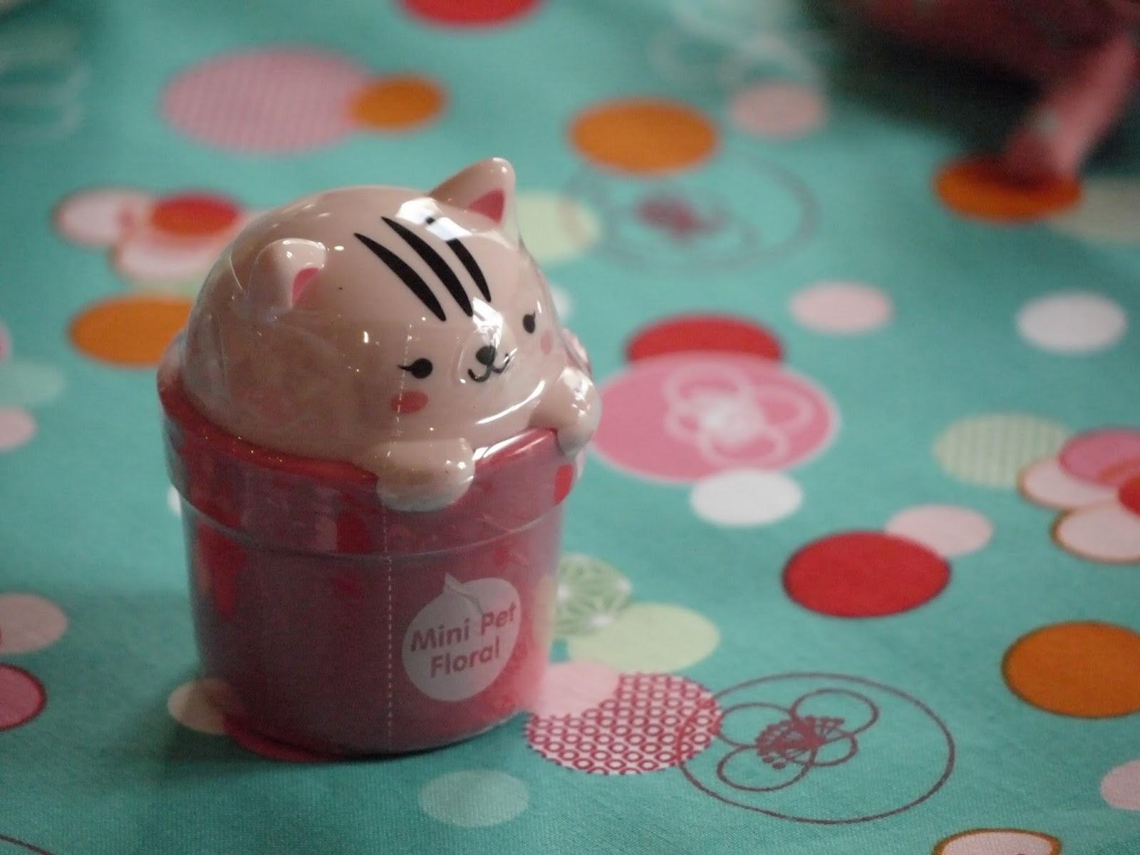 crème coréene chat