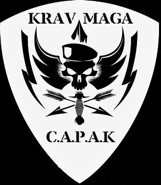 *    C . A . P . A . K    *  Centro Argentino Profesional Autodefensa Kravmaga