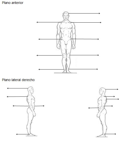Test postural fisioterapia for Test fisioterapia