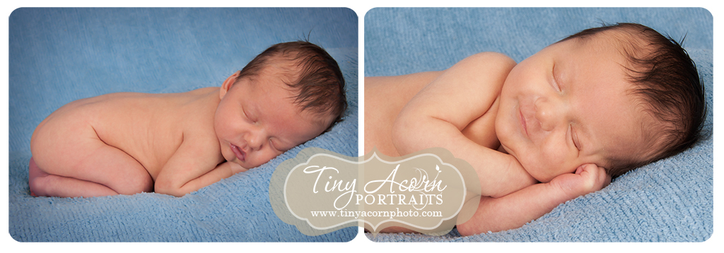 Newborn photography Minnesota