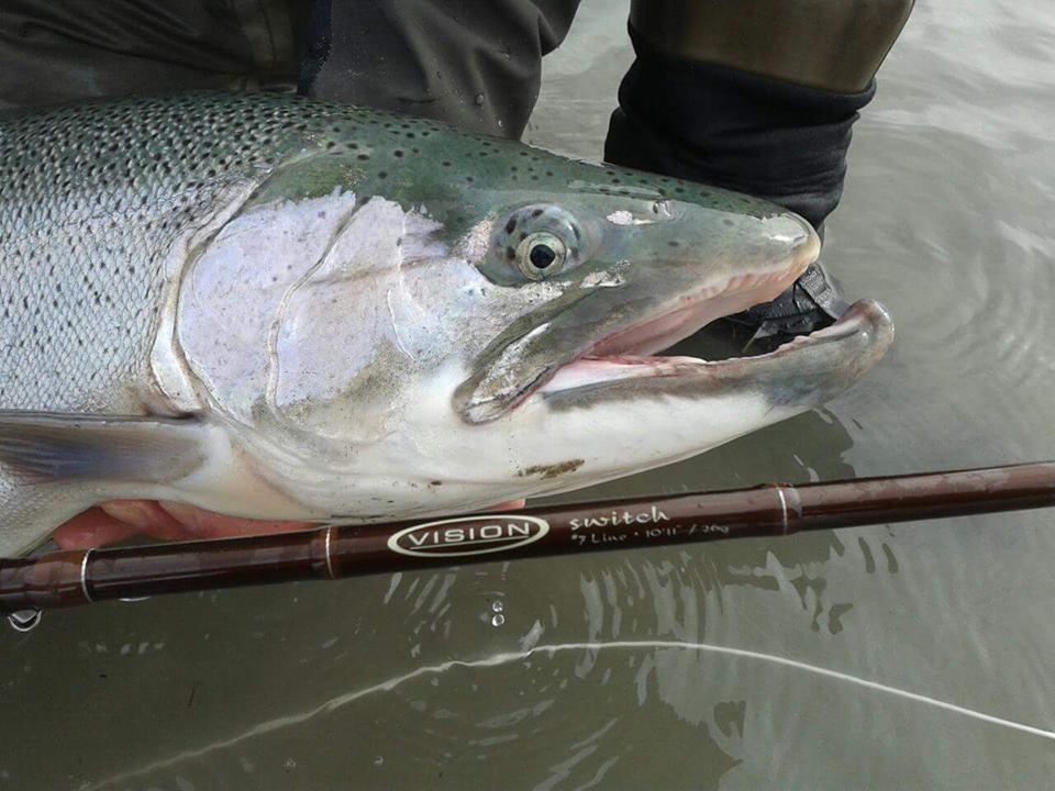 Los juegos la pesca jugar con el invierno