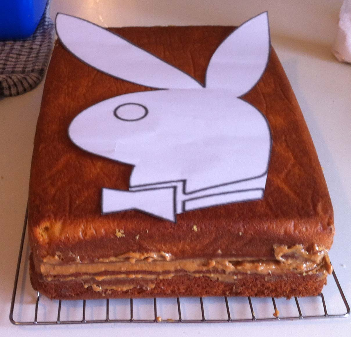 madnsneaky built: Playboy Cake, white chocolate ganache coloured ...