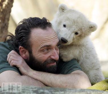 Knut si Papi!