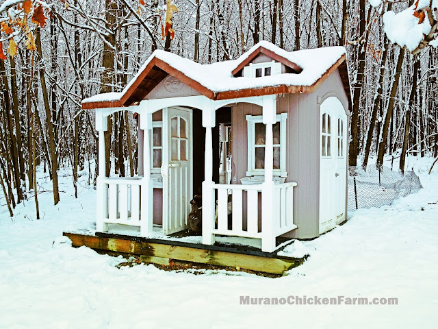 playhouse coop